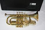 F.E.  Olds Cornet, Old Brass Lacquer Finish - NL5AZ