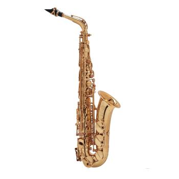 Selmer (Paris) Jubilee Series III Alto Saxophone - Gold Plating