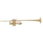 "Bach Stradivarius ""Triumphal"" Herald Trumpet"