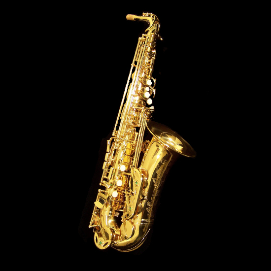Keilwerth MKX Professional Alto Saxophone - Gold Lacquer Finish