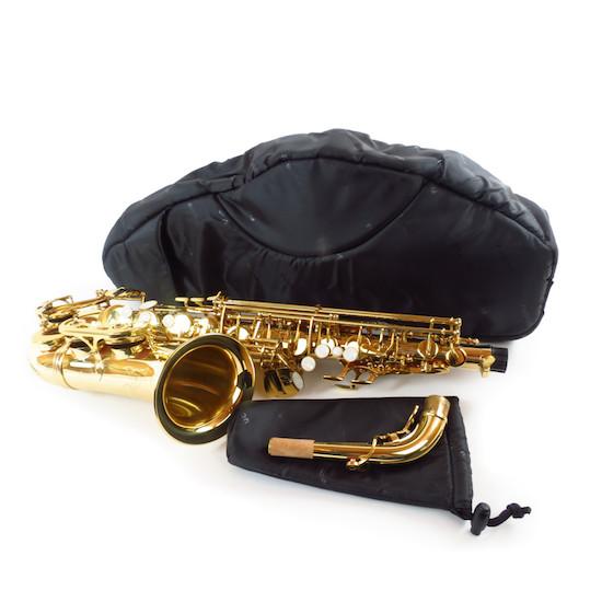 Fusion Alto Saxophone Sleeve