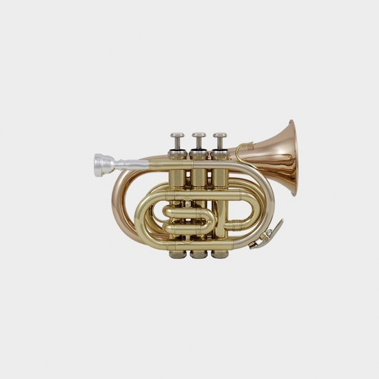 Roy Benson Student Bb Pocket Trumpet