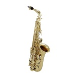 Roy Benson Professional Alto Saxophone [Lacquer Finish]
